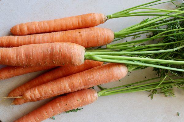 zanahoria ecologica
